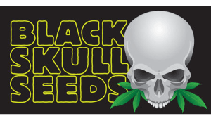 Logo of black skull seeds