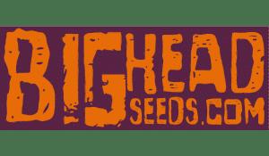 Bighead Seeds logo