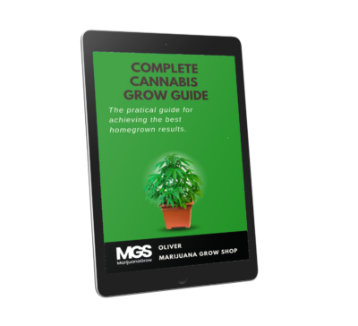 Free Ebook on growing cannabis