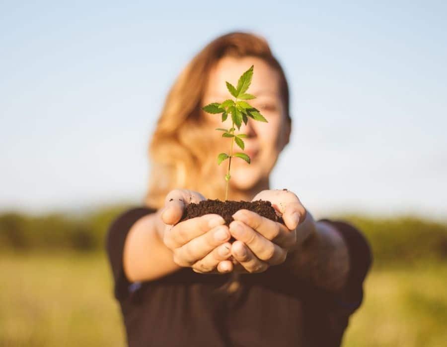 Woman holds a marijuana strain best for beginner growers